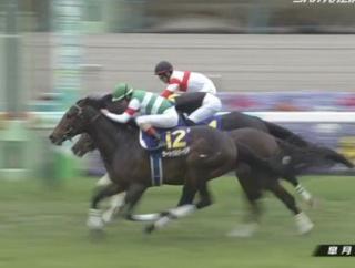 【競馬】ヴェロックス 次走は有馬記念へ