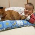 【動画】 満面の笑みで猫に噛み付く赤ちゃん
