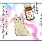 くららんち。~B型夫婦と猫2匹の日常~