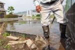 交野米。『土嚢袋』の調整は意外と難しい!~田んぼに水を引く作業は実は大変みたい!~