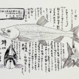 『「幻の魚は生きていた」3……クニマスとヒメマスと黒いマスをきちんと読み分け、筆者の論証を確かめよう』の画像
