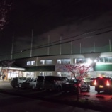 『信濃川沿いの夜桜見物を兼ねて信濃川河口1周ラン』の画像