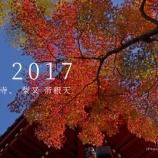 『20171128【動画】 紅葉 動画 2017_1080p』の画像
