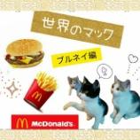 『【世界のマック】を食べてみよう!【ブルネイ編】』の画像