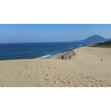 『砂丘をゆく』の画像