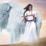 『白いキリンの母子と白いバッファロー伝説:神の使い』の画像