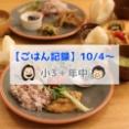 必ず美味しくなる「鯖の味噌煮(YouTubeレシピ)」【ごはん記録10/4~】