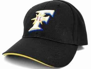 おまえら野球ファンなのに贔屓のチームの帽子被らないのか