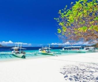 【フィリピン】ボラカイ島で極小ビキニでビーチに出た、台湾人女性が逮捕…「これも1つの芸術の形だ」と主張も罰金2500ペソ