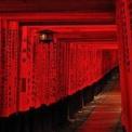 京都伏見稲荷へ