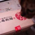 天ぷらを持ち帰り