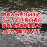 『【仁淀川友釣り日記 その30】今日こそ尺鮎か。』の画像