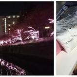 『【イベント】目黒川 イルミネーションCHANDONクルーズ2018』の画像