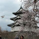 『2011年 4月30日 花見:弘前市・茂森会館』の画像