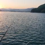 『カゴ釣り③紀伊国2021.05.23』の画像