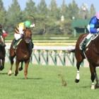 『【新潟2歳S結果】愛国産馬ショックアクションが2連勝で重賞V、ゴドルフィンのワンツー』の画像