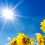 『夏「よっしゃ!梅雨を早めに退場させてやったでwwwwwwww」』の画像