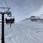 noskiing nolife / スキーがなければ人生はない