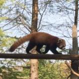 『いしかわ動物園に行ってきました~!』の画像
