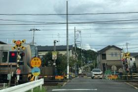 線路内がデコボコしてる「かまぼこ型踏切」が岩船小学校近くにある~インサイト交野No.125~