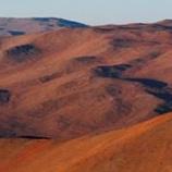 『人の仏性と砂漠の花』の画像