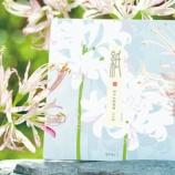 『ミドリさん夏レターがお目見え!夏のお花が満開です。』の画像