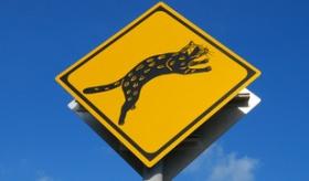 【日本の交通】    沖縄には 「猫注意の標識」 がそこら中に立ってるらしいぞ!!  海外の反応