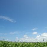 『沖縄からクライアント様がご来社されました』の画像