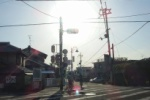 交野小学校前の交差点にはかつて、みどりのおばさんがおった!~インサイト交野No.70~
