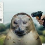 『見えない汚染:マイクロプラスチックと「木喰草衣心似月」』の画像