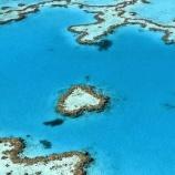 『サンゴ礁を守ってきた海鳥たちのあれ』の画像