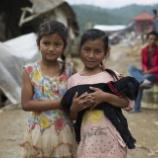 『ネパール大地震の動物たち』の画像