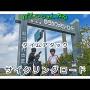 【ゆうかファミリーロード】一般県道熊本山鹿自転車道線