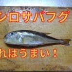 Fishing Life Season Ⅱ & Bike Life