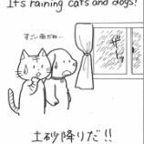 『英語イディオム⑦おまけ1~土砂降りだ!~』の画像