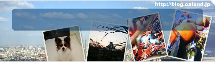 OAランド社長日記 イメージ画像