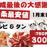 【平成最後の大判振舞】1月末まで!ファミリーカルビ、ネギタン塩 300円の写真