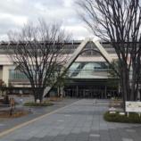 『JR岐阜駅南口のケヤキの木が消えていく?!』の画像