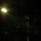 『アパート裏の夜景』の画像
