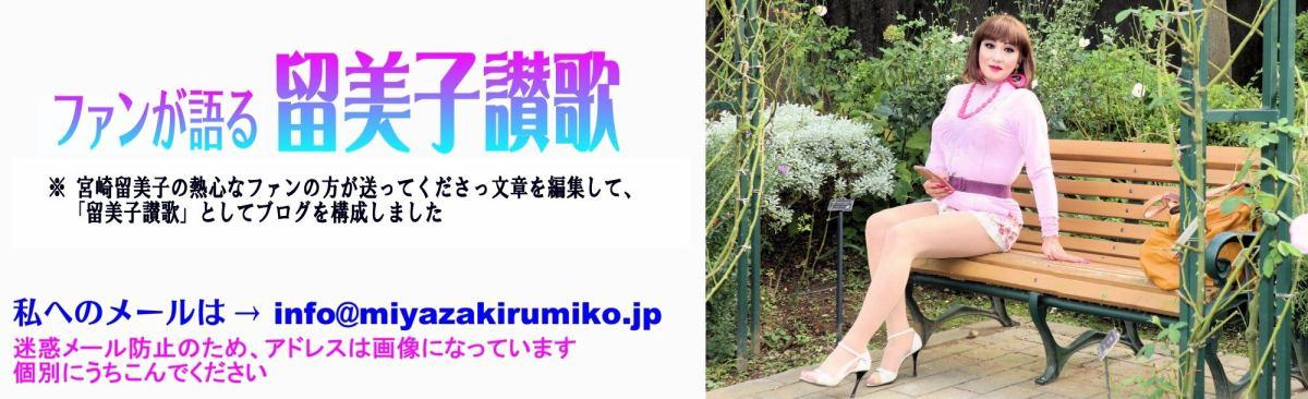 ファンが語る 留美子讃歌 イメージ画像