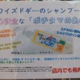 『お家シャンプーはワイズドギーおすすめ低刺激の「ポチタマのあわ・つや」で☆』の画像