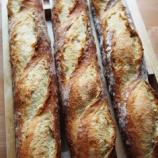 『バゲット、塩パンとクレセントロール』の画像