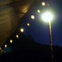 関沢森林公園 夜時間