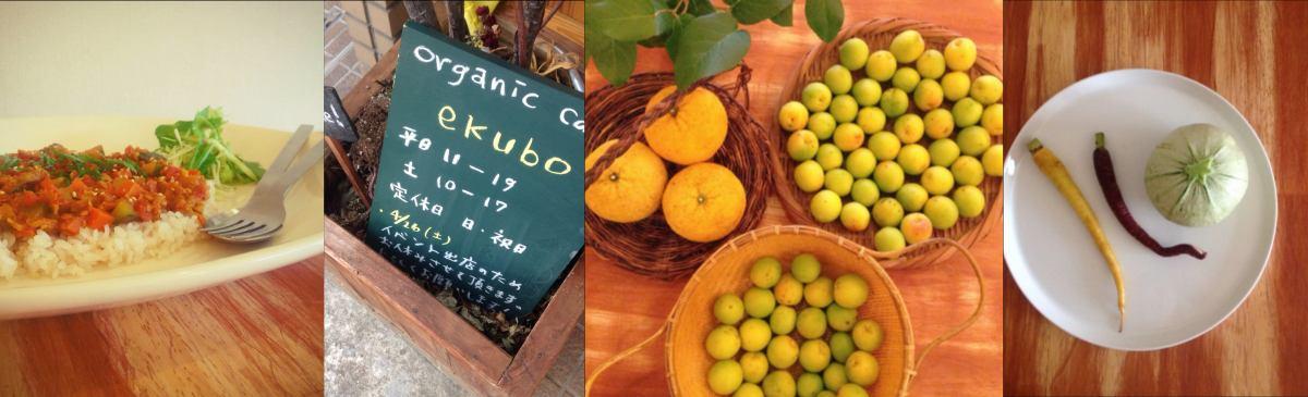 ekubo イメージ画像