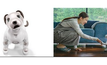 【悲報】新型aiboの機能を嫁に説明したら虎の尾を踏んだ話wwwww