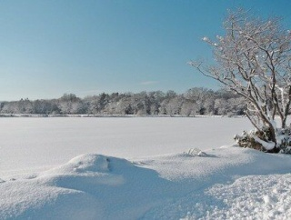 """海外「日本には正式に""""今日から冬""""とみなす日はあるのだろうか?」日本の冬の始まりの日に対する海外の反応"""