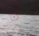 【動画】 ネス湖の湖面に奇妙な物が!