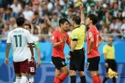 【サッカーW杯】 メキシコ監督「言いたくないが、今日、韓国のファール24個うけた。予防措置が必要だ」[06/24]