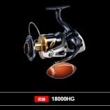 『20ステラSW 新製品』の画像