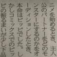 【悲報】アニメポケモンスタッフ「当初主人公のパートナーはピッピだったけど諸事情で変えた」